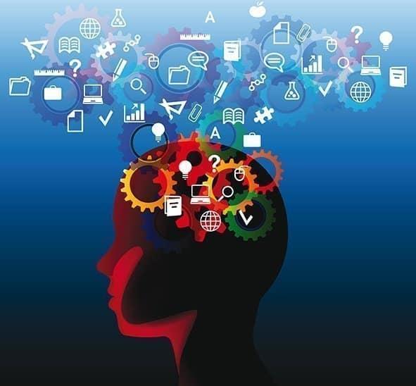 Descripción Maestría en Neuroeducación y Optimización de Capacidades