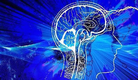 Descripción Especialidad en Neuropsicología Infantil