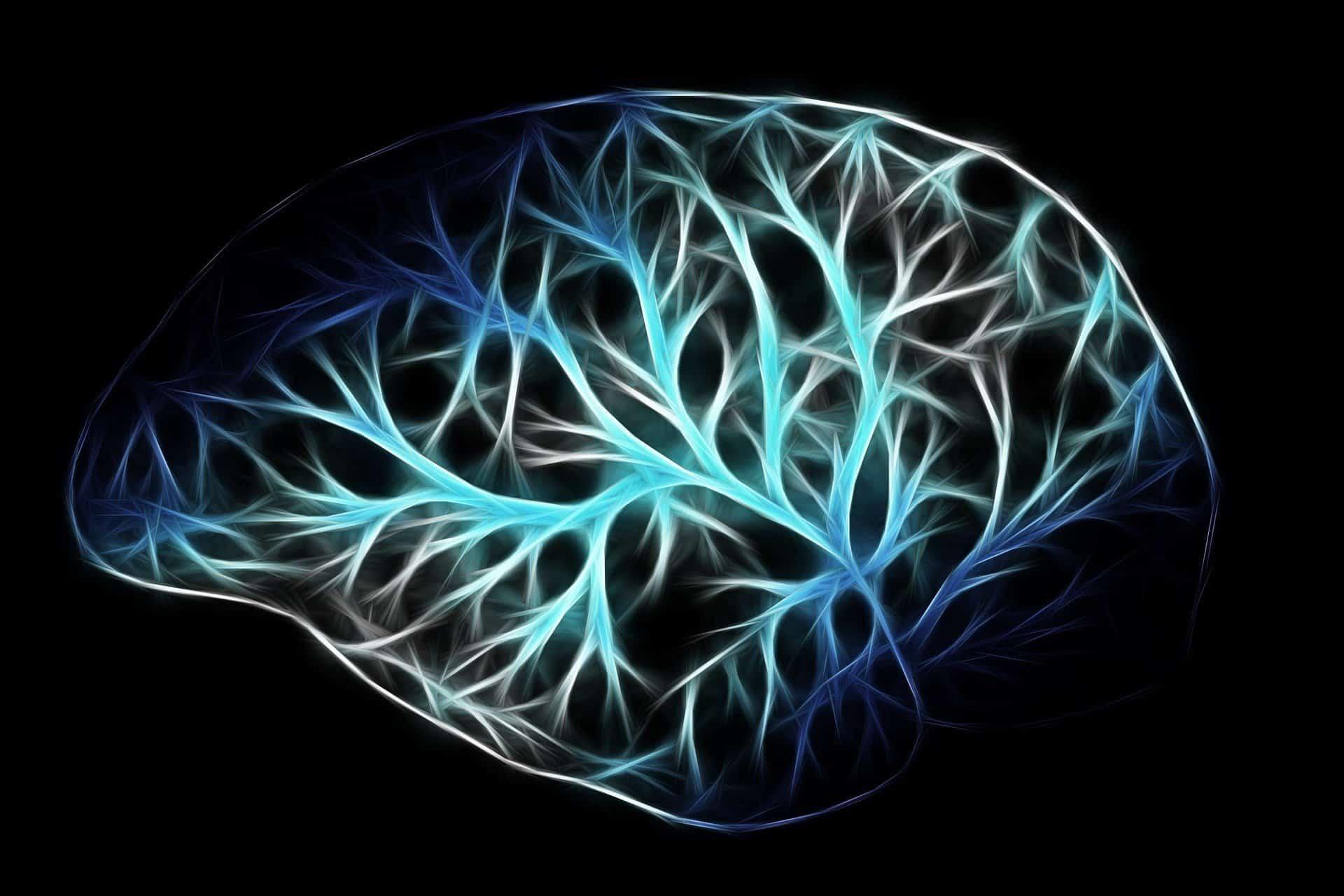 Descripción Especialidad en Neuropsicología